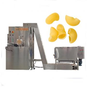 Automatic industrial pasta making machine plant