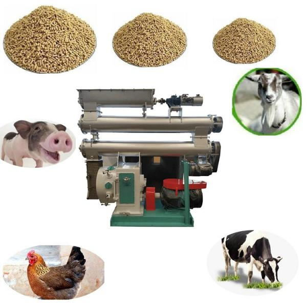 Factory Price Pet Feed Pellet Making Machine Dog Food Bulking Equipment Cat Feed Production Extruder Line #2 image